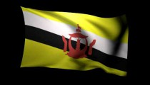 3D Rendering of the flag of Brunei waving in the wind.