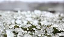 Ice-covered grass near Niagara Falls