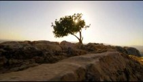 Slow-moving tracking of ruins and tree atop Mt. Arbel