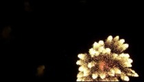 Royalty Free Stock Footage of Clip of pyrotechnics in the night sky.