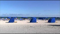 Lounge chairs with umbrellas on a beach in Miami.