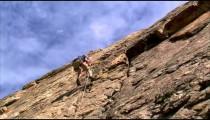 Clip of a mountain climber climbing up a cliff face.
