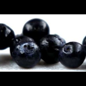 Royalty Free Stock Footage of Close up slow panorama of blueberries.