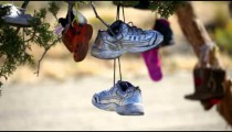 Shoes hanging from a tree