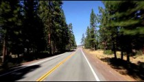 Time-lapse of driving down a road through a forest.
