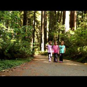 Three little girls walking in forest