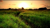 Panorama of a green field and dry ravine at sunset in Kenya.
