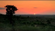 Sunset on the horizon in Kenya.