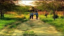 School boys walking home from school in Kenya.