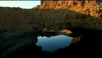 Royalty Free Stock Video Footage of a coastal rock arch at Dor Beach shot in Israel at 4k with Red.