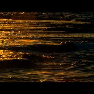 Stock Video Footage of waves breaking at sunset at Dor Beach shot in Israel at 4k with Red.