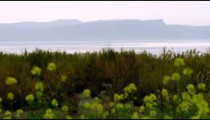Royalty Free Stock Video Footage of the shore of the Sea of Galilee shot in Israel at 4k with Red.