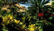 Royalty Free Stock Video Footage of Ein Gedi oasis Kibbutz shot in Israel at 4k with Red.