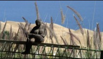 Royalty Free Stock Video Footage of a small statue near the Dead Sea shot in Israel at 4k with Red.