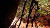 Stock Footage of a waterfall in the turbulent Iyon Tanur river in Israel.