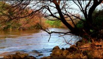 Stock Footage of the River Jordan and its vegetated banks in Israel.