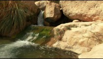 Stock Footage of a stream's mossy cascade in Israel.