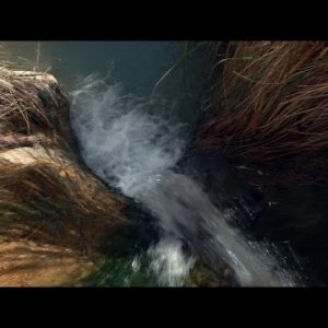 Stock Footage of a stream flowing over a boulder in Israel.