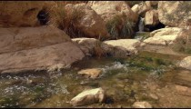 Stock Footage of a stream flowing among boulders in Israel.