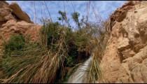 Stock Footage of a cascading stream at Ein Gedi, Israel.