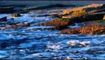 The shore at Dor Beach shot in Israel.