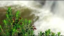 Bottom of Tahana Waterfall shot in Israel.