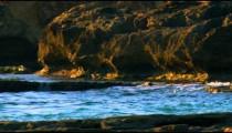 Panning shot of Dor Beach shot in Israel.