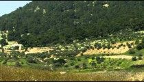 Panning shot of An orchard and fields shot in Israel.