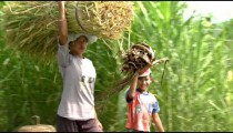 Clip of people carrying sticks on their heads in Bali.