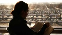Silhouette of a person reading a book in front of a window.