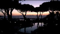 Panning shot of silhouetted trees at sunset in Punta Ala Italy.