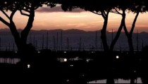 Sunset with silhouetted trees in Punta Ala Italy.