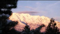 Snowy mountains rack focus from a pine tree.