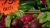 Hand grabs radishes in slow motion