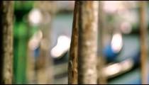 Racking, slow motion shot of gondolas bobbing by their posts