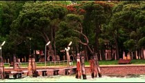 Tracking shot of a wooded park in Venice, from a water taxi