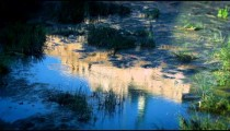 Reflection of Rome's Palace of Justice in the Tiber