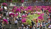 Pan of tourists and flowers on the Spanish Steps