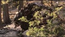 Nevada stock footage 63