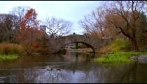 New York stock footage 28