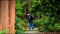 Vancouver stock footage 8