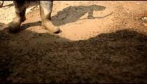 Stirring and moving muddy gravel