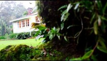 Tracking shot of house behind hedge