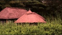 Grass-covered roofs of three structures