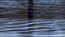 Slow motion shot of a reflection of a person on the water at a beach in Costa Rica