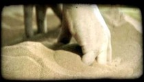 Child's hand plays with sand 3. Vintage stylized video clip.