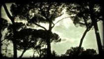 Sky Time Lapse. Vintage stylized video clip.