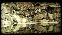 Couple Hiking 3. Vintage stylized video clip.