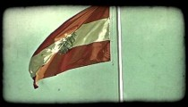 Vienna Flag 1. Vintage stylized video clip.