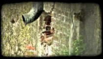 Wall pipe. Vintage stylized video clip.